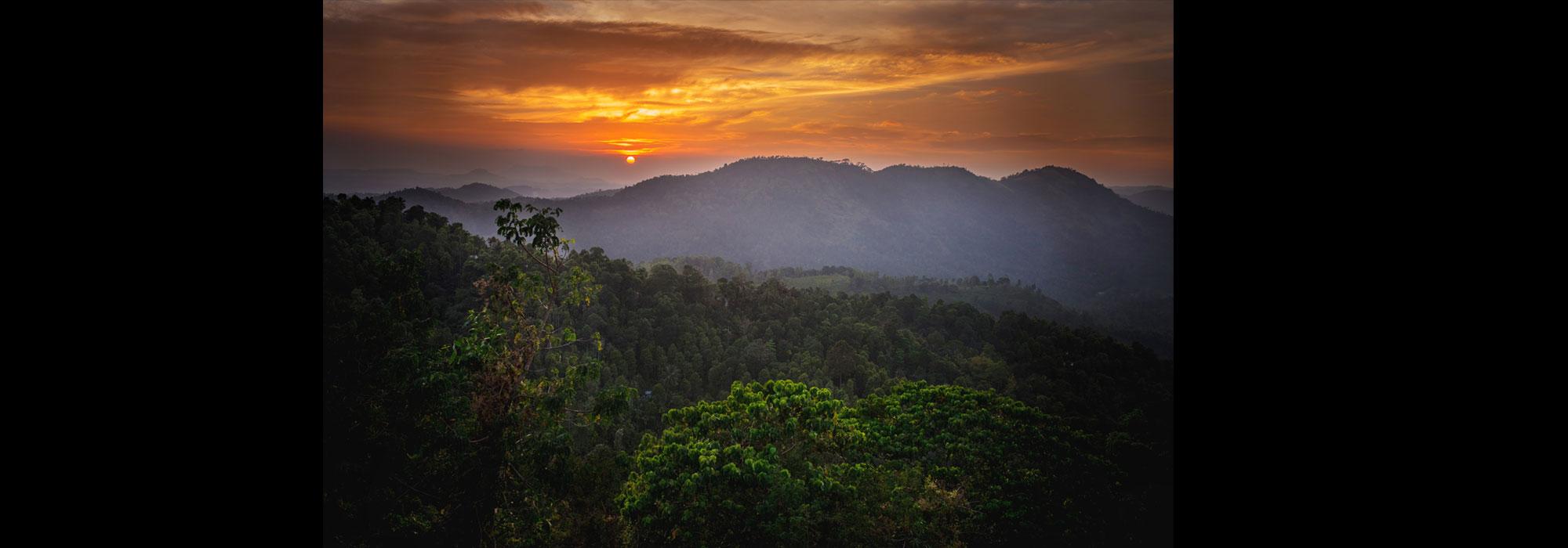 peyzazh-photo-koshkin-konstantin_srilanka1